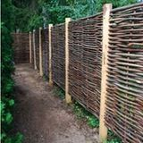 Wattle fencing originated in England and was traditionally woven with willow or hazel branches. However, it can incorporate a variety of twigs, reeds, or branches you find outdoors (namely oak, elder, hornbeam and ash).