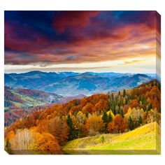 Gallery Direct Fall Sunset Gallery Wrapped Canvas