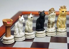 Cats & Dogs Chess Set Livens Up Board Game Battles Family Game Night, Family Games, Set Card Game, Pawn Stars, Play Therapy Techniques, Chess Pieces, Wood Carving, Cat Art, Wood Crafts