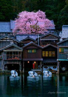 Situado en la orilla de la bahia de Ine sin Funaya,las casas Barco de Ine sus edificios de madera se construyen sobre aberturas de garajes como EDGE y características del aguaque actúan como amarres para embarcaciones de sus residentes «La Venecia del Japón »Kyoto