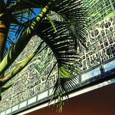 The Jewel box in the Bacardi Complex Miami Architecture, Bacardi, Jewel Box, Louvre, Tropical, Real Estate, Abstract, Gallery, Building
