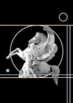 visu02b.jpg (430×610)