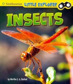 Introduces different types of insects to young readers, including their habitats, diets, and life cycles.