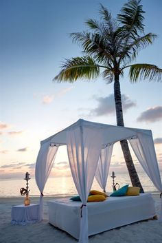 Отель Lux* South Ari Atoll (ex.lux* Maldives 5*) 5* (Мальдивы). Описание, расположение, фотографии, отдых и туры в отель Lux* South Ari Atoll (ex.lux* Maldives 5*) 5* в 2016 году от туроператора АРТ-ТУР
