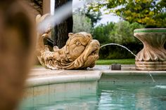 Some elements such as marble fish statues sculputures and some palm trees situated all around the venue's beautiful park, recall the sea theme