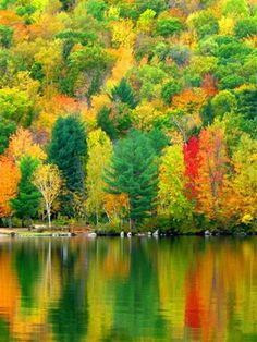Autumn colours in New Hampshire