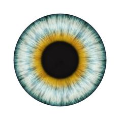 You may have experienced eye floaters before, but do you know what they are or why they occur? | Kelly Vision Center