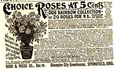 besottment by paper relics: Free Download: Victorian Roses Ad