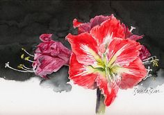 Out with the old, in with the new by Brenda Behr Watercolor ~ x Floral Watercolor, Watercolour, Watercolor Paintings, Behr, Make Me Smile, Old Things, Artists, Canvas, Drawings