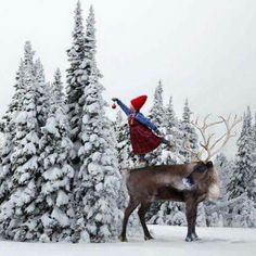 Green Christmas - Barenaked Ladies - Barenaked For The Holidays (2004 ...: pinterest.com/pin/85709199132355166