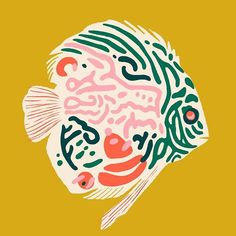 little fish. Mostly a lot of shapes.Funky little fish. Mostly a lot of shapes. Art Photography, Fish Art, Animal Art, Sketches, Fish Illustration, Illustration Art, Animal Illustration, Art Inspiration, Graphic Art