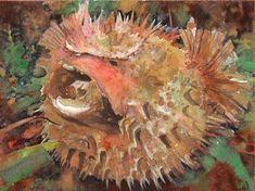 Puffer Fish Fine Art Print Reproduction Watercolor Painting