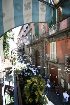 Naples……..THIS MUST BE A LITTLE MORE OF A SWANKIER NEIGHBORHOOD……..ccp