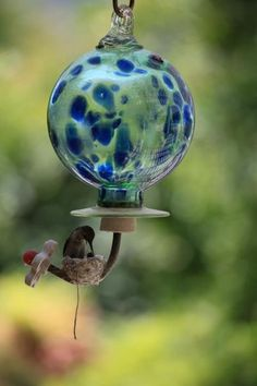 mother hummingbird feeding its newly hatched chick