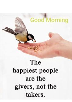 Good Morning Dear Friend, Good Morning Messages, Morning Wish, Good Morning Images, Good Morning Quotes, Happy People, Mornings, Motivational Quotes, Collections