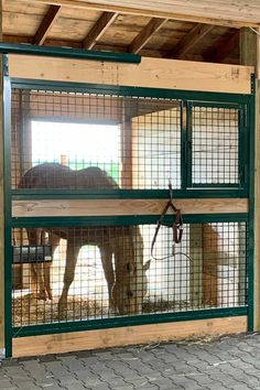 """Custom photos of RAMM welded horse stalls with a powder-coated green finish from Jody in Nebraska! """"We absolutely love these fronts! The doors glide like I've never seen a barn door do and they give my stalls an open feeling to them my horses love."""" #equestrian #horsestalls #horses #horseproperty #equestrianproperty #barn #farm #horse #equine #farmlife #ranch #horsestable #rammstalls #customstalls"""