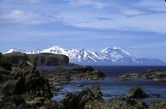 Island Hopping the Aleutian Islands: North to Alaska Moving To Alaska, North To Alaska, Visit Alaska, Pacific Ocean, Pacific Northwest, Living In Alaska, Great View, Marine Life, Places To Go