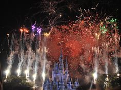 Disney World - November 2011 - One of the best photos I've ever taken with my Nikon.