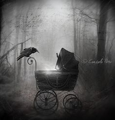 "Crows Ravens:  #Raven ~ ""Birth In the Darkness,"" by Aeternum-Art, at deviantART."