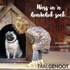 Wors in 'n hondehok soek Wise Sayings, Wise Quotes, Afrikaans Quotes, Idioms, Sash, Book Covers, Pugs, Homeschool, Teaching