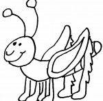 Listy Hmyz