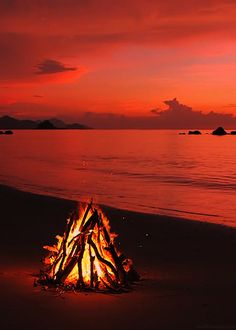 Discover & share this Animated GIF with everyone you know. GIPHY is how you search, share, discover, and create GIFs. Beautiful Sunset, Beautiful Places, Beautiful Pictures, Foto Gif, Images Gif, Palawan, Strand, The Great Outdoors, Mother Nature