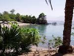 Eilat. Coral beach, Dolphins!