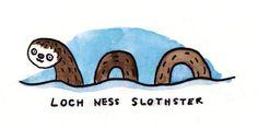 #sloth #funny