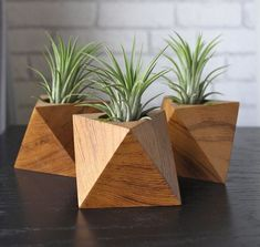 39 Captivating Wood Succulent Planter Ideas Of Unused Wood Succulents are perfect plants for dry gardens and are easy to root and grow. Once you learn how easy it […] Wood Projects, Woodworking Projects, Custom Woodworking, Woodworking Plans, Minimalist Decor, Minimalist Living, Minimalist Bedroom, Minimalist Wardrobe, Minimalist Kitchen