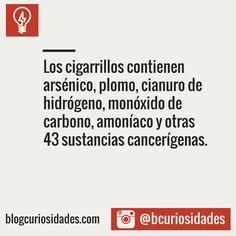 Blog Curiosidades Facebook: fb.com/bcuriosidad || Instagram:http://bit.ly/1MRuLmq