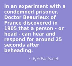 snap (15) Prison, Facts, Truths