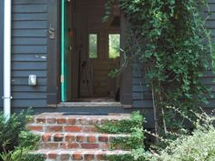 Fig covers steps made of recycled brick (harvested from their driveway) leading into Susan Hable's garden studio. Native honeysuckle hangs over the front entryway over the studio, which has shiplap walls. The Chinese-style lantern is an item that her sister found in a Texas barn.