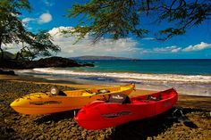 We Paddle #Maui #offers some of the most unique #tours on the Island. http://mauiticketsforless.com/maui-kayaking/we-paddle-maui-outrigger-canoe-tours.html#.VlKW-nYrLIU