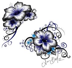 Image from http://evgraphic.com/wp-content/uploads/2015/02/Blue-and-White-Hibiscus-Flower-and-Star-Tattoos-Design-Image-Idea.jpg.