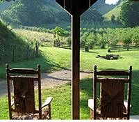 On the porch with a view of the Apple Orchard...