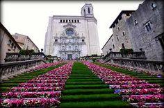 girona temps de flors 2012 fotos - Buscar con Google
