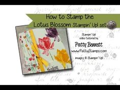 How To Video: Stamping the Lotus Blossom flowers - Patty's Stamping Spot