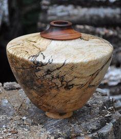 Alaskan Birch