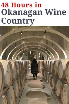 Are you a lover of wine? Consider a visit to Okanagan Wine Country in British Columbia. With the American dollar down, this emerging wine region in Canada is a place that should be on any oenophile's radar.