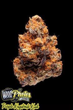 17 Best Fav MJ Strains images in 2018 | Cannabis, Medicine, Hemp oil