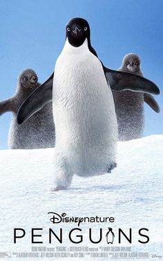 """Penguins"" is a coming-of-age story about an Adélie penguin named Steve on a quest to build a suitable nest and start a family. Movies 2019, Hd Movies, Movies Online, Movies And Tv Shows, Romance Movies, Comic Movies, Action Movies, Disney Movies, Horror Movies"