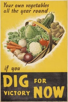 You own vegetables all the year round... if you DIG for victory NOW