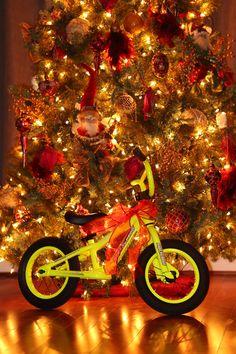 Bmx Racing, Christmas Tree, Holiday Decor, Home Decor, Teal Christmas Tree, Decoration Home, Room Decor, Xmas Trees, Christmas Trees