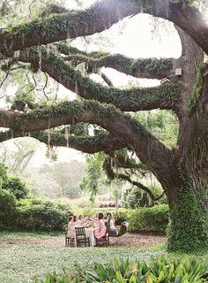 garden party | Jen Huang #wedding