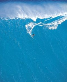The BIG wave - I hope this surfer is turning in the right direction...