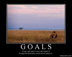 Goals -If you can see it, you can reach it: Except for that that tree, You'll never reach it...