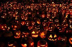 Ways of Celebrating Halloween Throughout October | Her Campus