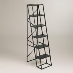 Ladder, step stool, extra seating, bookcase, plant stand in one! One of my favorite discoveries at WorldMarket.com: Tall Decorative Ladder $150