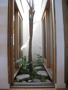 Courtyard lightwell w/ outdoor shower Note: (door from bathroom? Interior Design Gallery, Home Interior Design, Interior Decorating, Indoor Courtyard, Internal Courtyard, Patio Interior, Interior Barn Doors, Solar Chimney, Artistic Tree