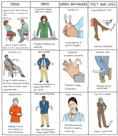 What you can't hide Body language is essential in human communications. It consists of 65%-90% in every conversation.